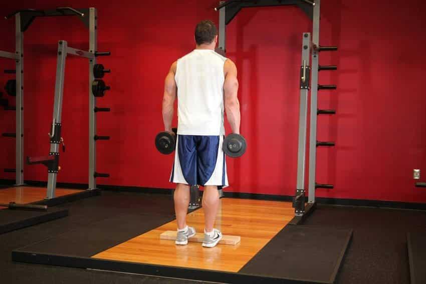 Standing Dumbbell Calf Raise - Bacak Egzersizleri - GÜÇLÜYAŞA