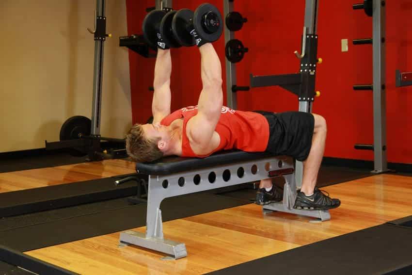 Dumbbell Bench Press - Göğüs Egzersizleri - GÜÇLÜYAŞA