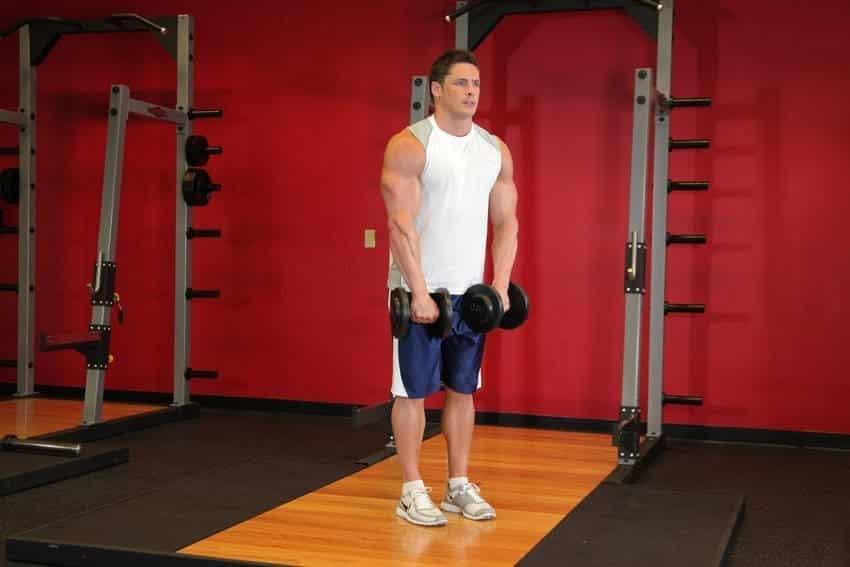 Front Dumbbell Raise - Omuz Egzersizleri - GÜÇLÜYAŞA