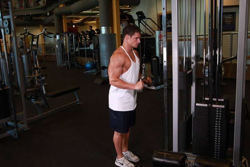 Triceps Pushdown V-bar İle - Trisep Egzersizleri - GÜÇLÜYAŞA